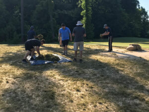 Sprigging the Putting Green